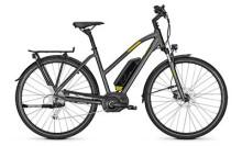E-Bike Raleigh STOKER B9 Trapez