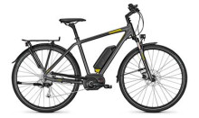 E-Bike Raleigh STOKER B9 Diamant