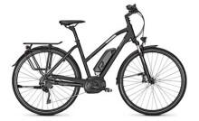 E-Bike Raleigh STOKER B10 PRO Trapez / Wave