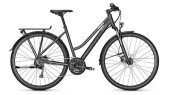 Trekkingbike Raleigh RUSHHOUR LTD Trapez