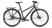 Citybike Raleigh NIGHTFLIGHT PREMIUM Trapez