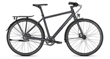 Citybike Raleigh NIGHTFLIGHT PREMIUM Diamant