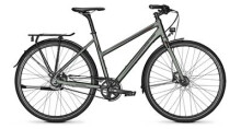 Citybike Raleigh NIGHTFLIGHT DLX Trapez