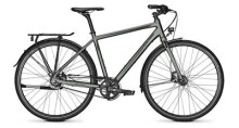 Citybike Raleigh NIGHTFLIGHT DLX Diamant