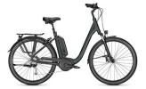 E-Bike Raleigh KINGSTON 9 XXL