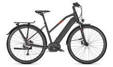 E-Bike Raleigh KENT 9 Trapez / Wave