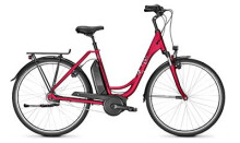 E-Bike Raleigh JERSEY EDITION rot