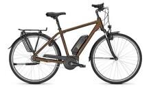 E-Bike Raleigh JERSEY 8 Diamant