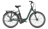E-Bike Raleigh DOVER XXL Comfort