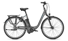 E-Bike Raleigh DOVER 8 HS grau