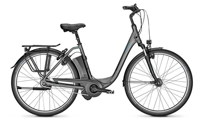 E-Bike Raleigh DOVER 8 HS grau 2019