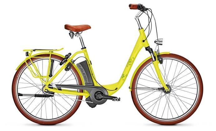 E-Bike Raleigh DOVER 7 HS EDITION grün 2019