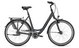 Citybike Raleigh CHESTER 8 XXL Wave