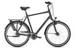 Citybike Raleigh CHESTER 8 XXL Diamant