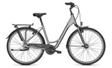 Citybike Raleigh CHESTER 8 Wave grey
