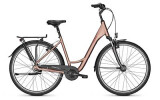 Citybike Raleigh CHESTER 8 Wave