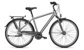 Citybike Raleigh CHESTER 8 Diamant grey