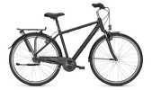 Citybike Raleigh CHESTER 7 Diamant