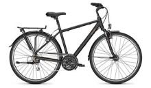 Trekkingbike Raleigh CHESTER 21 Diamant