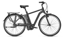 E-Bike Raleigh BOSTON 8 schwarz Diamant