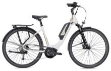 E-Bike FALTER E 9.0 RD 500 Wh weiß/champagner