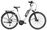 E-Bike Falter E 9.0 RD 400 Wh Wave weiß/champagner