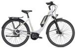 E-Bike FALTER E 9.0 RT 500 Wh weiß/champagner