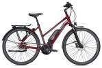 E-Bike Falter E 9.5 RT Trapez rot/dunkelgrau