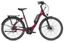 E-Bike FALTER E 9.5 FL Wave rot/dunkelgrau