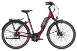 E-Bike Falter E 9.5 RT Wave rot/dunkelgrau