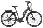 E-Bike Falter E 9.5 RD Wave schwarz/dunkelgrau matt