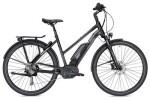 E-Bike Falter E 9.5 RD Trapez schwarz/dunkelgrau matt