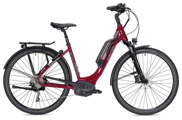 E-Bike Falter E 9.5 RD Wave rot/dunkelgrau 2019