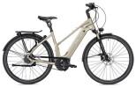 E-Bike Falter E 9.9 FL Trapez champagner/weiß