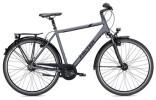 Citybike Falter C 6.0 Herren anthrazit/schwarz Matt