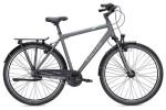 Citybike Falter C 4.0 Plus Herren titanium/blau matt