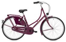 Hollandrad Falter H 1.0 Classic violett