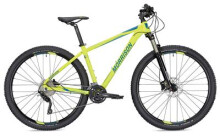 Mountainbike Morrison Kiowa Diamant grün/blau 29