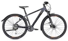 Trekkingbike MORRISON XM 6.0 Herren anthrazit