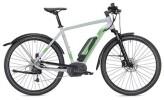 E-Bike Morrison E 6.0 Cross Herren grau/neongrün