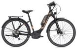 E-Bike Morrison E 8.0 Wave schwarz/bronze matt