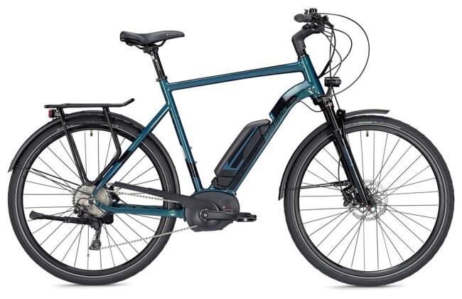 E-Bike Morrison E 8.0 Herren grün/schwarz 2019