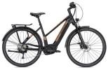 E-Bike Morrison E 10.0 Trapez schwarz/bronze matt