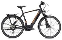 E-Bike Morrison E 10.0 Herren schwarz/bronze matt