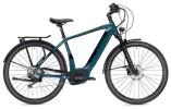 E-Bike Morrison E 10.0 Herren grün/schwarz