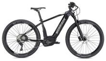 E-Bike Morrison Cree 2 schwarz/anthrazit matt 27,5