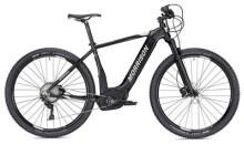 E-Bike Morrison Cree 2 schwarz/anthrazit matt 29