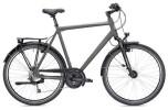 Trekkingbike MORRISON T 5.0 Plus Herren titanium/blau matt