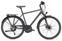 Trekkingbike MORRISON T 5.0 Herren titanium