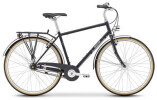 Citybike Breezer Bikes DOWNTOWN8+